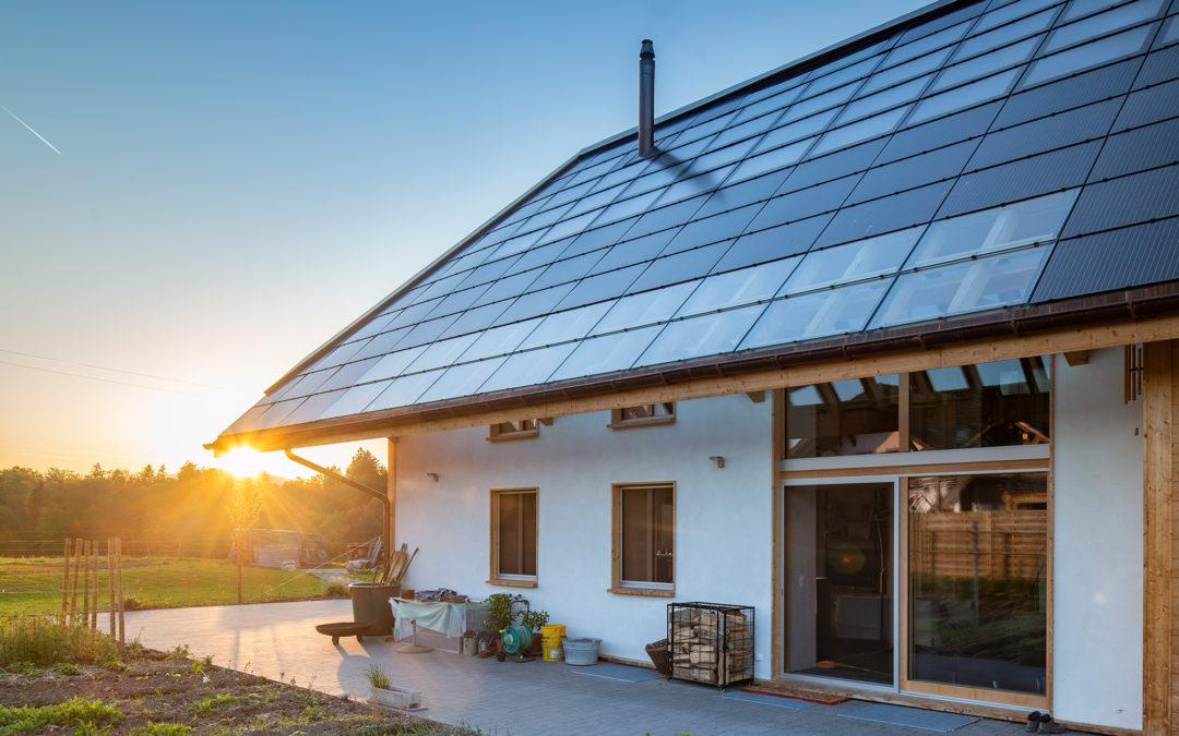 Die absolute Steigerung von Nachhaltigkeit